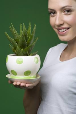 10 Mascarillas Faciales con Aloe para Diferentes Tipos de Piel1
